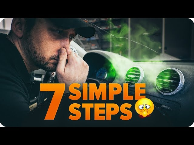 How to get rid of a bad smell in your car | AUTODOC