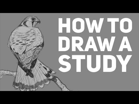 How To Do A Sketch Study