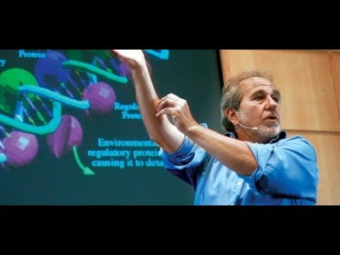 The Biology of Belief Full Lecture, by Bruce Lipton