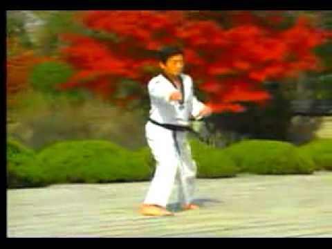 8. Taekwondo Poomsae Taegeuk Pal Jang (WTF)