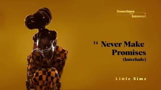 Little Simz - Never Make Promises (Interlude) [Official Audio]