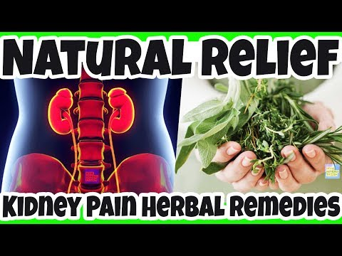 fight-kidney-pain-naturally-with-these-herbal-remedies---alleviate-kidney-pain-naturally-with-herbs