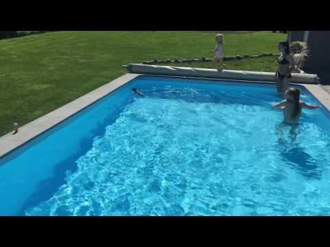 Cat in the swimming pool/Chat qui nage dans une piscine