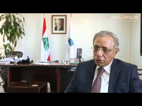 Investment Law in Lebanon: Law 360 Investment Law of Lebanon in Practice