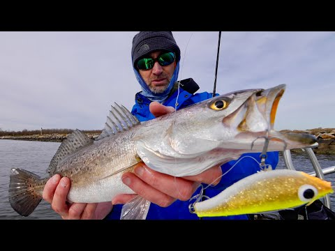 Jerkbaits, How To Use Them For Hot Speckled Trout Action