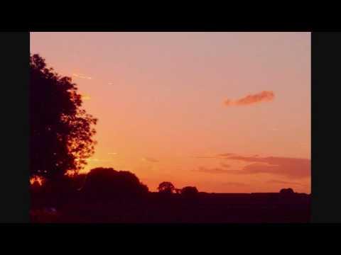 Monastic Song- O Quanta Qualia