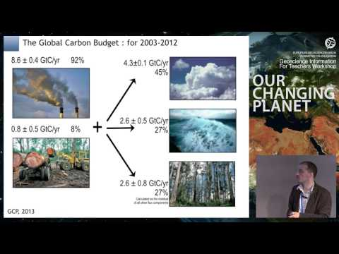 GIFT2014: The global carbon cycle and climate carbon coupling