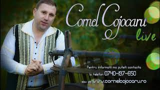 Download Cornel Cojocaru - Eu doar o viata am si E pacat sa n ai pacat