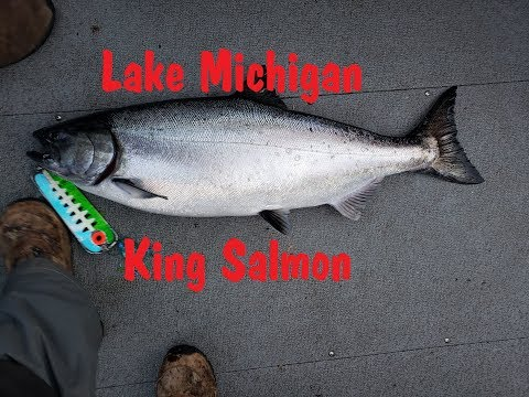 NFN Salmon And Trout Adventure Lake Michigan Great Lakes 2019 Port Washington