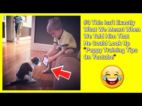 Kids Who Take Instructions Too Literally | 20+ Funny Pictures