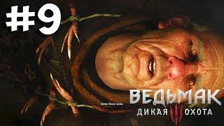 Прохождение Ведьмак 3: Дикая Охота (The Witcher 3: Wild Hunt) Полное прохождение. #9 Ворожей