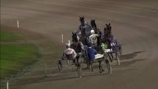 Vidéo de la course PMU PRIX D'UTRECHT (DEFI DES GAGNANTS PAYS)
