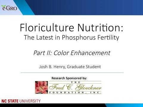 Phosphorus Fertility Part 2: Red Color Enhancement