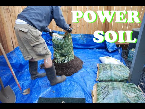 Best Potting Mix for Growing Seeds in Pot Indoors YouTube