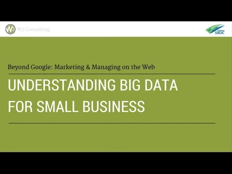 Understanding Big Data for Small Business