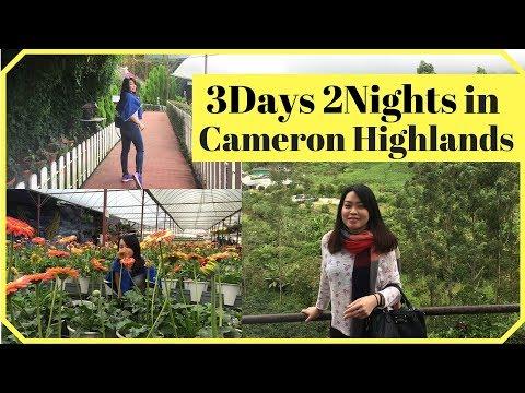 Cameron Highlands Malaysia Travel Vlog