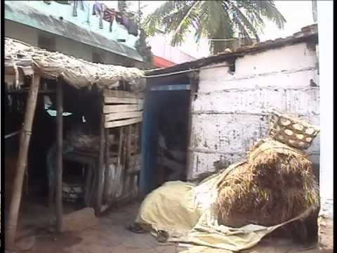 Bharavasheillada Baduku (a short film about poor people in Gadag city, Karnataka, India)