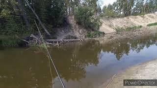 Ловля на самодельные вертушки Рыбалка на спиннинг с берега Спиннинг на дикой реке Часть 2