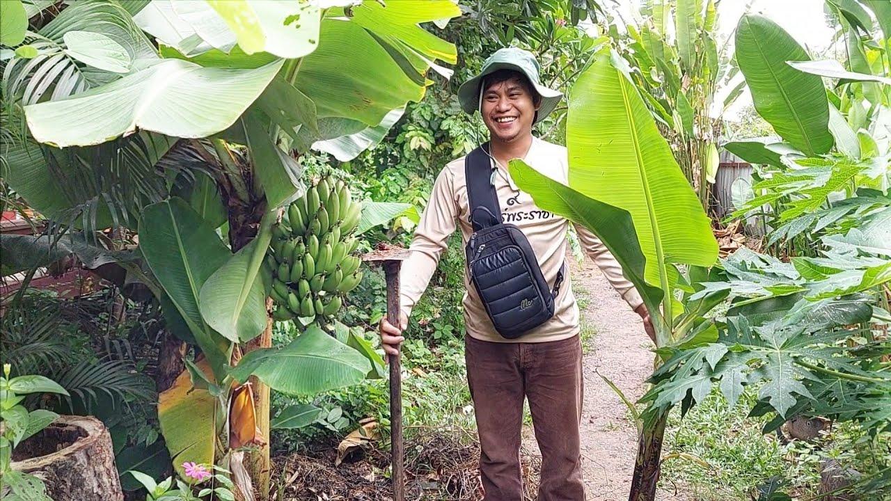 เกษตรวัยรุ่นยุคใหม่อายุ29ปี ใจรักธรรมชาติ มีความสุขกับสวนหลังเลิกงาน เก่งมากๆ!!!