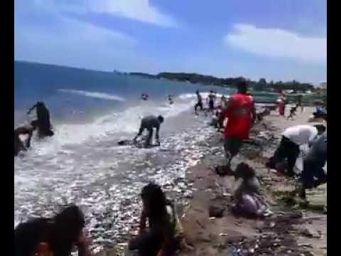 Osukan labason zamboanga del norte.subrang init na panahon pupunta mga isda tabi ng dagat.