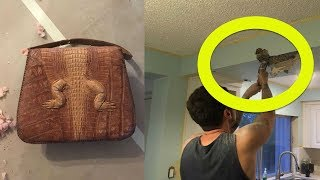 This Man Was Cutting Into His Kitchen Ceiling When He Discovered A Hidden Purse