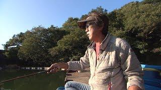 #239 パワーで制する!管理池&野釣りの良型へら