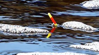 Рыбалка на удочку в апреле Ловля плотвы весной на поплавок