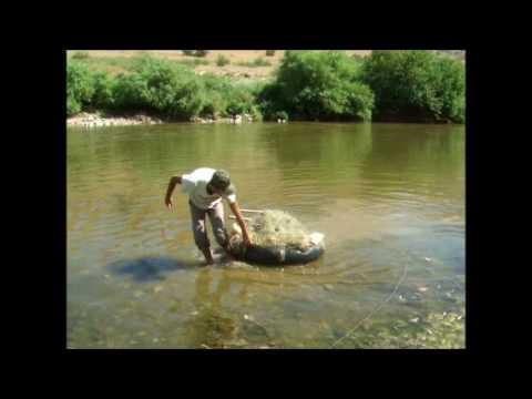 Mesopotamia :: a Tigris walking journey