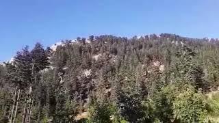 Küçük orhan 'ın  videosu... 😊😊😊