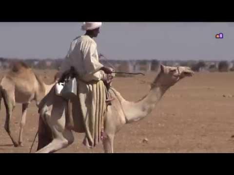 Sudan - Dirt road trip from Khartoum to Kassala