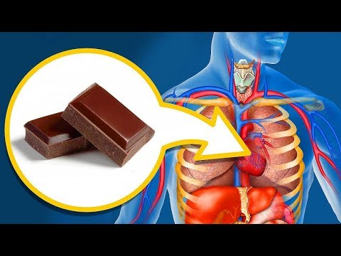 Qué Le Sucede A Tu Cuerpo 10 Minutos Después De Comer Chocolate