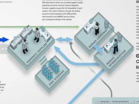 Visualise Process - Gartner DNA