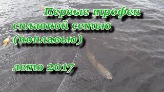первые трофеи сплавной сетью (поплавью) лето 2017