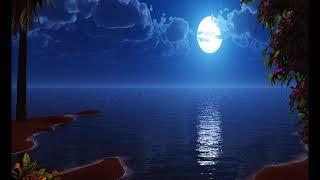 ANRI/夏の月