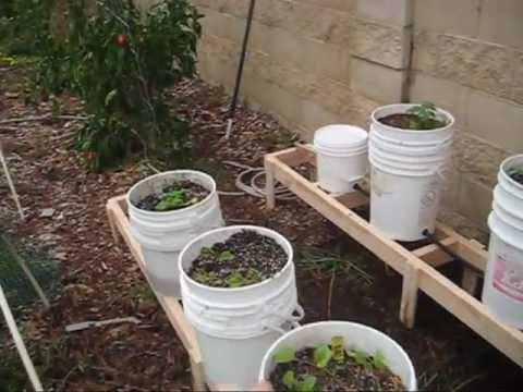 Off-Grid Elevated Self-Watering Garden Beds: Butch's Garden