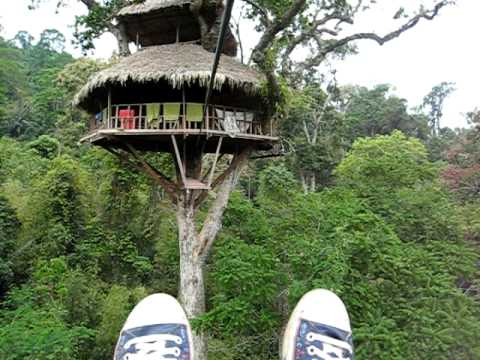 Gibbon Experience Laos Zipping Into Treehouse<a href='/yt-w/7OpLdzJvZHA/gibbon-experience-laos-zipping-into-treehouse.html' target='_blank' title='Play' onclick='reloadPage();'>   <span class='button' style='color: #fff'> Watch Video</a></span>