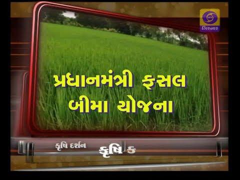 KRISHI DARSHAN | Pradhan Mantri Fasal Bima Yojana