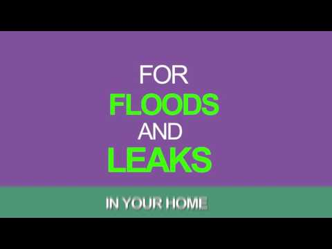 Best Water Damage Restoration and Cleanup Cupertino