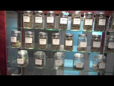 Baixar Cali Cannabis - Download Cali Cannabis | DL Músicas