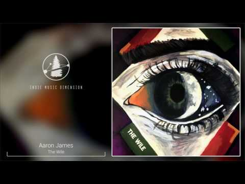 Aaron James - The Wile