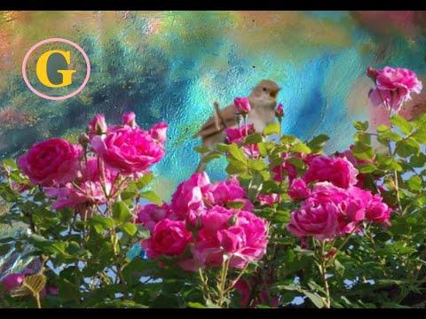 Bolero   -   Maurice Ravel    -   Direction Manuel Rosenthal  -  HD