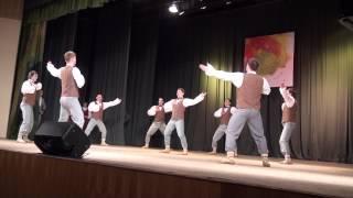 Cēsu deju apriņķa.deju kolektīvu skate Cēsu CATA kultūras namā 2.03.2013 - 00901