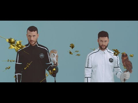 Don Diablo ft. Calum Scott - Give Me Love | Official Music video
