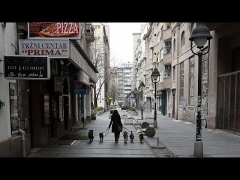 euronews (em português): Os animais de estimação e a pandemia