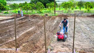 Saddleback Church's Organic Farm in Orange County