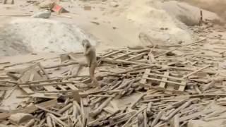 Woman fighting to survive mudslide in Peru caked in brown sludge
