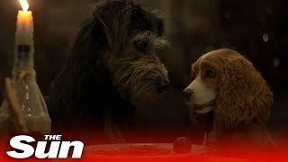 lady-tramp-2019-official-trailer