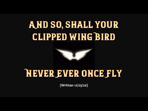 And So Never Shall Your Clipped Wing Bird Ever Once Fly