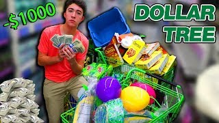 I SPENT 1,000 $1 Bills At The DOLLAR STORE