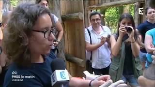 Le Parc Animalier de Sainte-Croix dans l'émission 9h50 la matin sur France 3 Lorraine - ...
